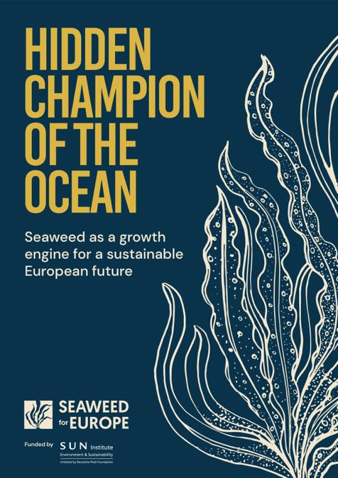 Hidden_Champion_of_the_ocean-Report